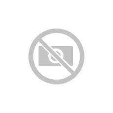Elephants-Catania---Comunicato-Stampa---Rif.-Flag-femminile---5-maggio-2019
