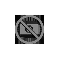 FLAG-FEMMINILE-(F3)-FIDAF-–-2015-INTERDIVISIONALI-E-FINALI-PER-LE-PINK-ELEPHANTS